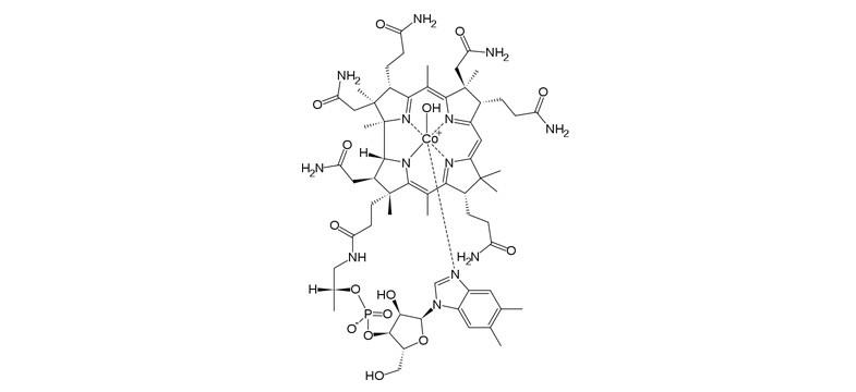 Formas de vitamina B12: Hidroxicobalamina