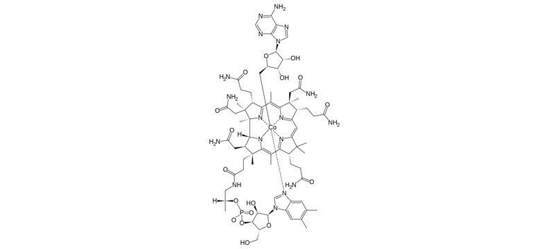 Formas de vitamina B12: Adenosilcobalamina