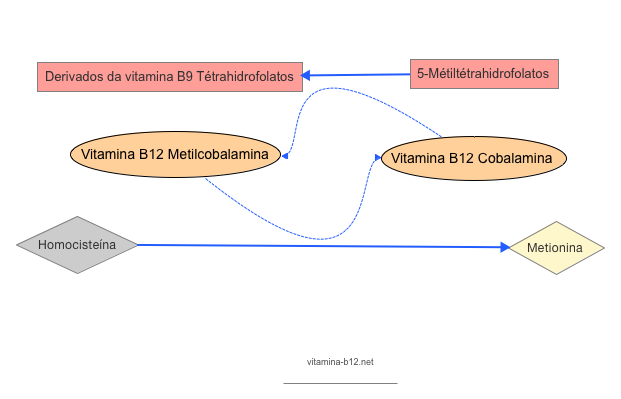 metil-cobalamina